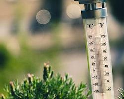 luftbefeuchter-temperatur3